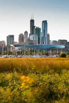 Summer Afternoon at Northerly Island
