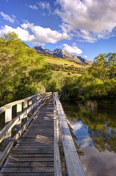 Glenorchy Lagoon Walkway, near Queenstown, Otago, South Island, New Zealand Nz South Island, New Zealand South Island, The Beautiful Country, Beautiful Places, Beautiful Forest, Places Around The World, Around The Worlds, New Zealand Holidays, New Zealand Landscape
