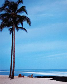 honeymoon in Hawaii?!