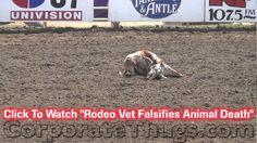 California's Worthless Rodeo Injury Report