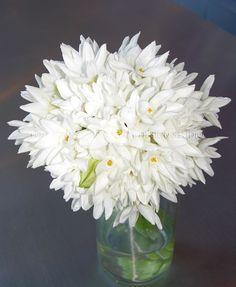 Bridesmaid bouquet.. white narcissus