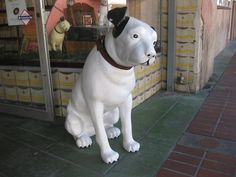 It's Nipper! Found a great vintage record store in California that decorates with Nipper, the RCA dog. They had them in all sizes including this really big one that they set out in front of the store each day :-)