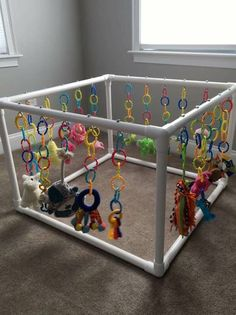 Whelping Puppies, Whelping Box, Dog Kennels, Samoyed Puppies For Sale, Puppy Playground, Dog Enrichment, Puppy Room, Diy Bebe, Dog Rooms