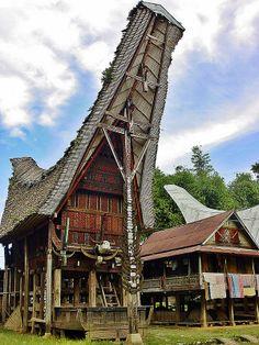 Ceremonial House with Buffalo Heads, Toraja, Sulawesi, Indonesia