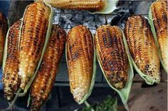 Grilled Corn on the Cob - Cairo,Egypt