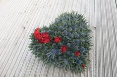 It might be a funeral wreath, but I really do love the contrast between prickly sea holly & soft red roses