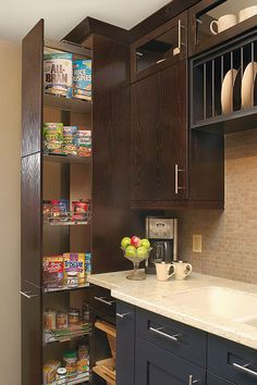 Dispensa Pantry Cabinet - Kitchen Craft Cabinetry
