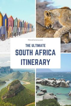 The best South Africa itinerary 2 weeks or less of travel time. This guide to South Africa covers all the highlights of Cape Town, the Garden Route, Kruger National Park safari, and has suggestions for luxury hotels and accommodations. Parc National Kruger, Kruger National Park Safari, Chobe National Park, National Parks, Cape Town Hotels, Africa Destinations, Holiday Destinations, Travel Destinations, Beste Hotels