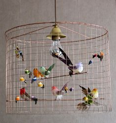 Birdcage lamp....my life is pretty much headed this direction....@Lesli Todd....for pinterest night...I will supply the birds if someone else can bring chicken wire....