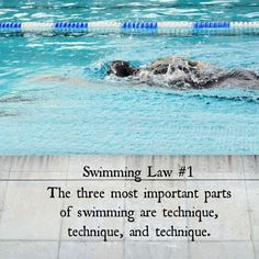 Head over to https://ironswimming.wordpress.com/ to learn more about how the three most important parts of swimming are technique, technique, and technique