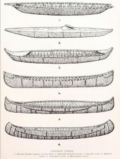 Paddle Making (and other canoe stuff): Historic Paddle Illustration - Canadian Field-Naturalist