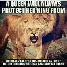 A queen will always protect her kids from hood rats, fake friends, no good family. Lion Quotes, Me Quotes, Qoutes, Motivational Quotes, Funny Quotes, Inspirational Quotes, My Queen Quotes, 2pac Quotes, Funny Memes