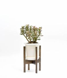 Mid Century Modern Plant Stand with Pot Indoor pot with