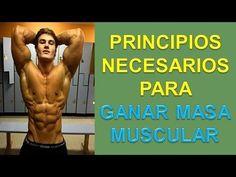Como Aumentar Masa Muscular - http://ganarmusculoss.blogspot.com  Los principios fundamentales que hay que seguir para aumentar masa muscular rapidamente. Para conseguir masa muscular no se debe descansar más de 1 minuto o minuto y medio. Con este tiempo de descanso no se pierde la congestión conseguida con la serie anterior