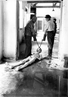 Survivors of the Dachau concentration camp demonstrate the operation of the crematorium by dragging a corpse toward one of the ovens. Dachau, Germany, April This saddens me greatly. Ppl forget about how the Nazi's treated ppl. Especially the Jews. Photo Choc, Lest We Forget, Don't Forget, Second World, World History, World War Two, Historical Photos, Wwii, Religion