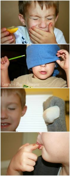 12 Games and Activities to Teach Children about the Five Senses ~ Learn Play Ima. - 12 Games and Activities to Teach Children about the Five Senses ~ Learn Play Imagine - Five Senses Preschool, My Five Senses, Senses Activities, Preschool Science, Science For Kids, Science Activities, Classroom Activities, Preschool Activities, Fun Learning