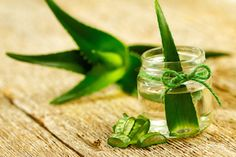 ALOE VERA has 20 minerals, 12 vitamins, 18 amino acids, 200 active plant compounds (phytonutrients), and strong antibacterial, antiviral and antifungal properties. http://www.foodmatters.tv/articles-1/top-8-superfoods-that-heal-your-entire-body