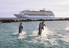 Royal Caribbean Adventure of the Seas... win a cruise on Adventure of the Seas! http://pinterest.com/pin/20758848252600261/