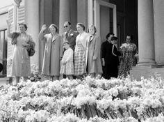 NLD-550430-SOESTDIJK: Het jaarlijkse defile ter gelegenheid van de verjaardag van koningin Juliana. Op het bordes Juliana, Beatrix, Bernhard, Marijke, Irene en Margriet. 30-04-1955