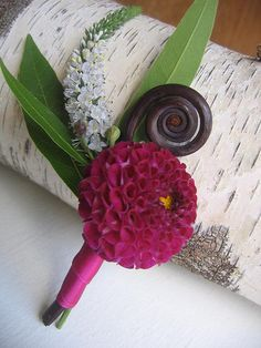 Veronica, fern curl and pink dahlia boutonniere