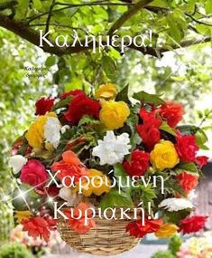 Greek Quotes, Chat Board, Good Morning, Happy Birthday, Cards, Decor, Buen Dia, Happy Brithday, Decoration