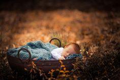Doces sonhos.  Fotografia: Adrian C. Murray no 500px.