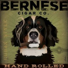 BERNESE Mountain Dog CIGAR company graphic by geministudio on Etsy