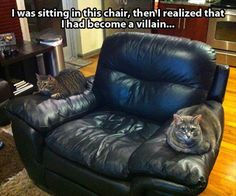 Funny Pictures Of The Day - 61 Pics