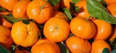 Quelle est la différence entre la clémentine et la mandarine ? - De Saison