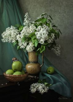 Admiration of white lilac by Daykiney on DeviantArt
