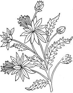 Ingalls florals - Google zoeken