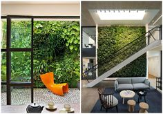 08-jardin-vertical-pared-completa