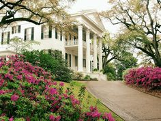 LOVE this HOUSE!!!!! and lanscape and those columns and the double decker front porches and everything about it!**Jerry g