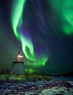 ~ ~ The Northern Lights ~ ~
