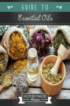Easy Guide to Essential Oils by Homemade Recipes at http://homemaderecipes.com/healthy/guide-to-essential-oils-3-part-series/