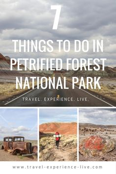 7 Things to Do in Petrified Forest National Park, Arizona.