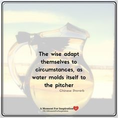 The wise adapt themselves to circumstances, as water molds itself to the pitcher - Chinese Proverb
