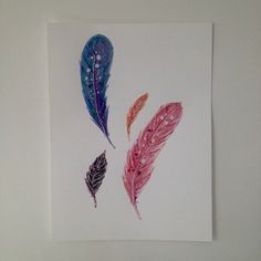 Feather fly original Illustrations of fancy feathers