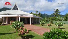 Katolická katedrála