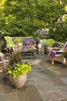 Traditional Patio with exterior stone floors, Fence, Ipomoea Sweet Caroline Light Green