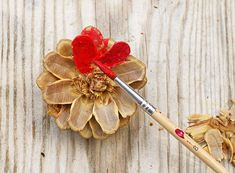How To Make A Pinecone Flower Heart Decoration - Pillar Box Blue - - Pinecones can be cut and painted to look like flowers. This is a great tutorial showing how to make a pinecone flower to create a gorgeous heart decoration. Pine Cone Art, Pine Cone Crafts, Pine Cones, Pine Cone Decorations, Valentine Decorations, Flower Decorations, Paper Flowers Diy, Flower Crafts, Pine Cone Flower Wreath