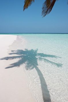3 days please on a Deserted Island Beach ~ Maldives by Caroline von Tuempling~~ Ocean Beach, Beach Day, Beach Trip, Beach Travel, Nature Beach, White Sand Beach, Summer Beach, Beach Aesthetic, I Love The Beach