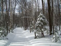 Winter in the U.P. So very cold but so very beautiful <3