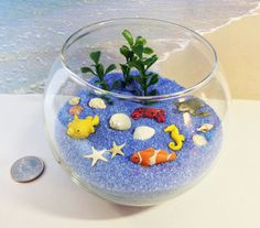 This item is ready to ship via USPS for $12  Includes: glass fishbowl (3.5 wide at brim, 5 wide in middle) coarse blue sand sea turtle puffer fish clown fish sea horse crab assorted seashells (including starfish and pearl) plastic algae plants  See my other beaches here: https://www.etsy.com/shop/carielewyn?section_id=18035259