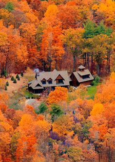 Autumn Colors, Albany, New York