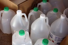 How Empty Milk Jugs Changed My Garden - turning then into green houses for outdoor seed starting.