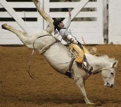 Rodeo- oh the miles of Texas I've seen due to my brother and his rodeo dreams