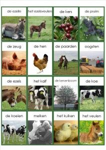 1 million+ Stunning Free Images to Use Anywhere Learn Dutch, Dutch Language, Farm Crafts, Free To Use Images, School Items, Dutch Recipes, In Kindergarten, Kids And Parenting, Activities For Kids