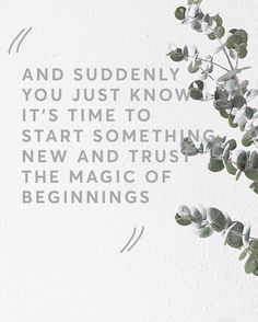 The magic of new beginnings