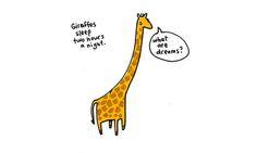 hayvan illustrasyon ilginc bilgiler brooke barker 17